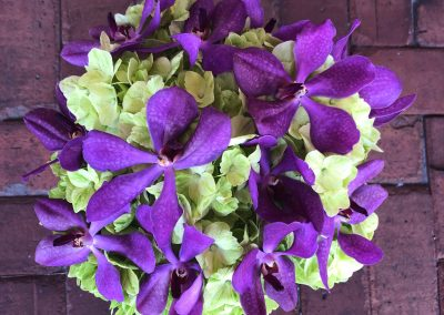 """Green Hydrangea/Purple Orchids"""